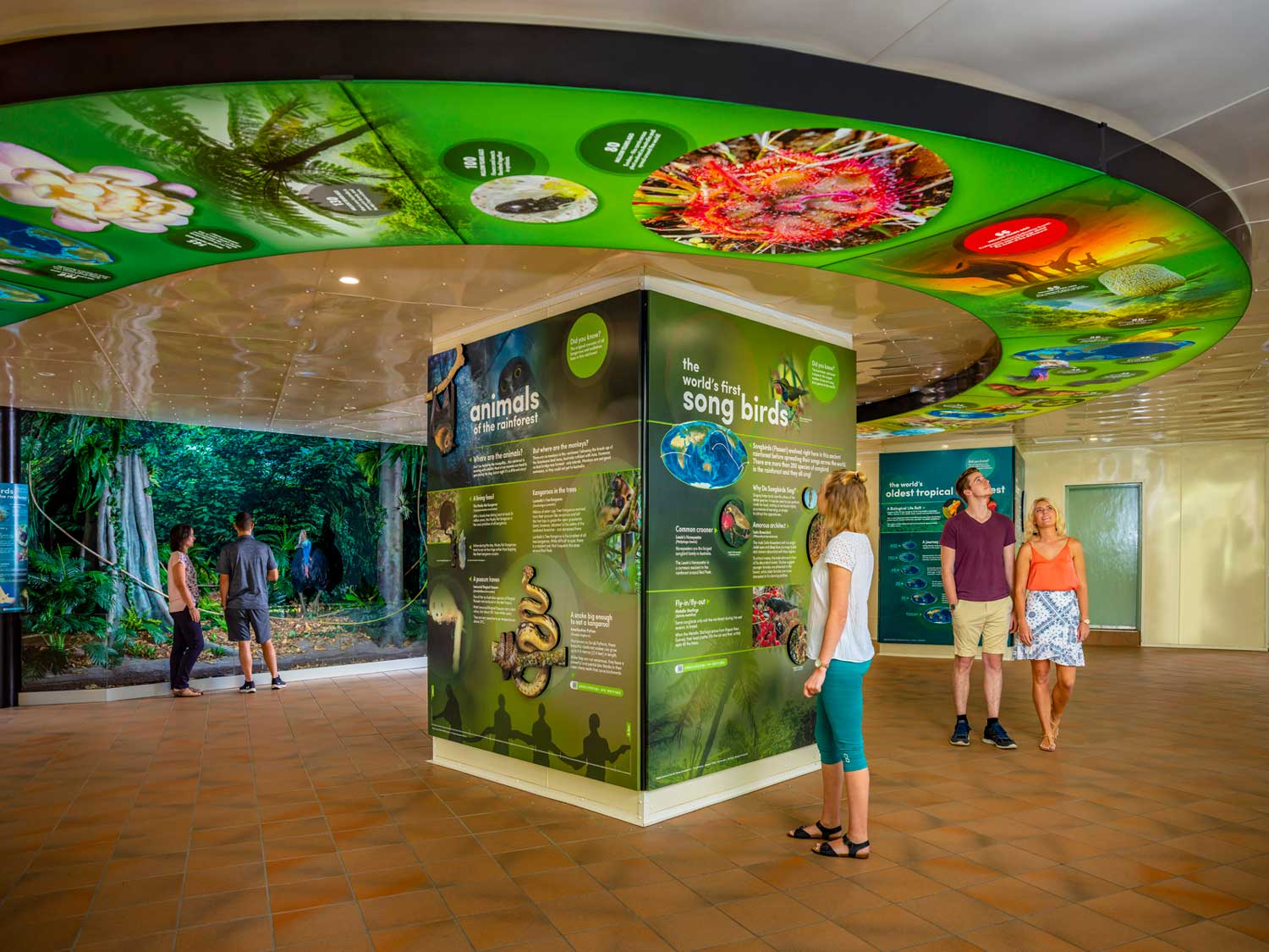Rainforest-Discovery-Zone